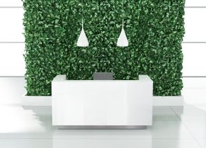 Ice Reception Desk